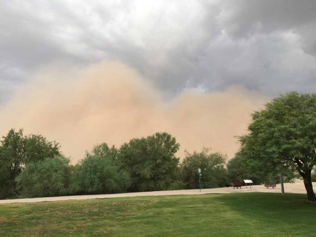 image of dust storm approaching the park